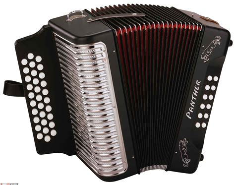Accordion PNG Image | PNG Mart